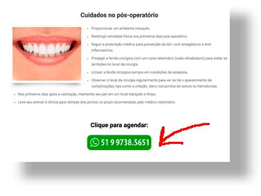 WhatsApp no marketing Digital para dentistas